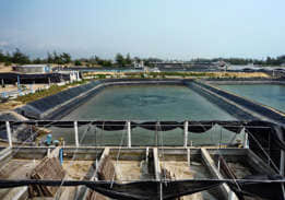Hainan farms seepage control project